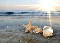 Set de table coucher de soleil sur la plage