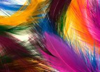 Set de table plumes colorees
