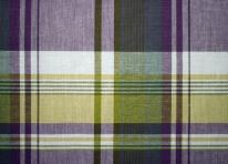 Tissu ecossais violet et vert